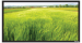 Цены на Экран Vutec ELEGANTE Fixed 137*243 MatteGrey Особенности: Превосходное качество по умеренной цене Рама 4 см в ширину Абсолютно плоское состояние полотна Прочный легкий алюминиевый корпус Черное бархатное покрытие рамы Настенный крепеж в комплекте Полотна: