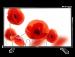 Цены на Telefunken TF - LED32S40T2 Поддерживаемые форматы файлов  -  DivX,   Поддержка цифровых стандартов  -  DVB - S2,   Встроенный медиа - плеер  -  Есть,   Частота обновления  -  50,   Диагональ  -  80,   Поддержка HD  -  HD - Ready,   Поддержка 3D  -  Нет,   Контрастность  -  1200,   Угол обзора п