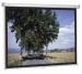 ���� �� Projecta SlimScreen 180x102 Matte White (44088) ������� 44088 ��� ������� ������������ ��������� 76 ����. ����� ������ 180 �� ������ ������ 102 �� ��� ��������� �������� - ���������� ����������� ������ Matte White ��� 7 �� ������������ ����� Projecta SlimSc
