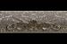 Цены на Керамическая плитка El Molino Cenefa Leonora Oro - Beige бордюр 8x25
