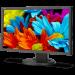 Цены на Nec жидкокристаллический LCD 21,  5'' [16:9] 1920х1080 IPS,   nonGLARE,   250cd/ m2,   H178°/ V178°,   1000:1,   16,  7M Color,   6ms,   VGA,   DVI,   DP,   Height adj.,   Pivot,   Tilt,   HAS,   Swivel,   3Y,   Black E224Wi - BK Nec E224Wi - BK Монитор Nec Монитор жидкокристаллический NEC Монито