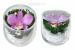 Цены на Цветы в стекле: Композиция из натуральной орхидеи Размер: высота 7 см,   диаметр 6,  5 смМатериал: орхидеи,   стекло Данная композиция состоит из натуральной орхидеи,   высушенной по специальной технологии,   которая даёт возможность цветку сохранять свой свежий ви
