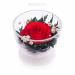 Цены на Цветы в стекле: Композиция из красной розы Данная композиция состоит из натуральных роз,   обезвоженных по специальной технологии,   которая даёт возможность цветам сохранять свой свежий вид на несколько лет,   в среднем 6. В течение этого времени вы сможете лю