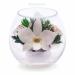 Цены на Цветы в стекле: Композиция из белых орхидей Данная композиция состоит из натуральных орхидей,   обезвоженных по специальной технологии,   которая даёт возможность цветам сохранять свой свежий вид на несколько лет,   в среднем 6. В течение этого времени вы сможе
