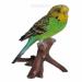 """Цены на Фигура декоративная садовая навесная""""Зеленый попугай""""L9,  7W8H16,  5см"""