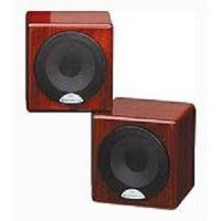 MONITOR AUDIO Radius R45