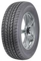 Dunlop Grandtrek ST30 (245/55R19 103S)