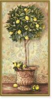 Schipper Лимонное дерево
